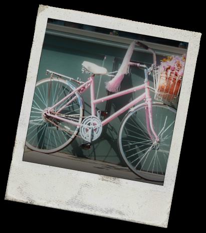 Pink Schwinnpoloroid