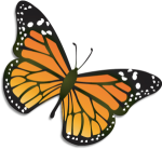 Monarch_butterfly-png-e1346181957922-300x275